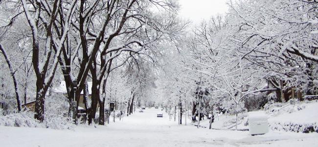 dlaczego lubie zime