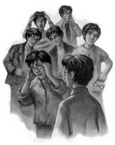 siedmiu potterów