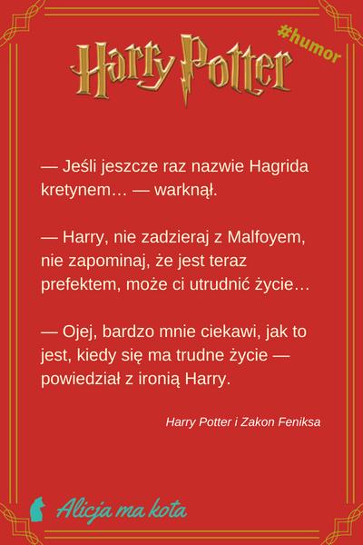 Harry Potter - śmieszne żarty