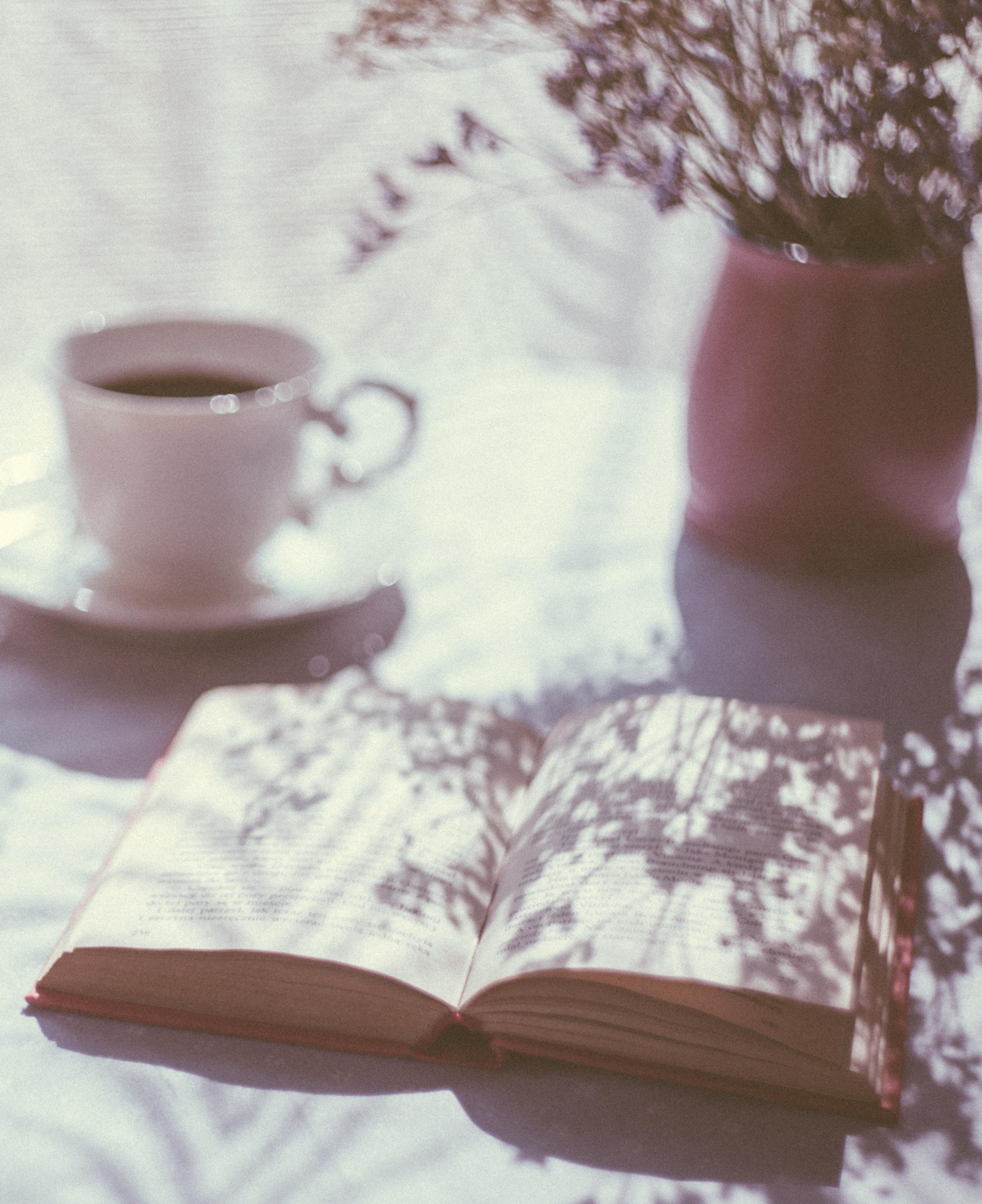 ciekawy blog o książkach