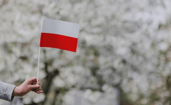 polskie akcenty w zagranicznych książkach